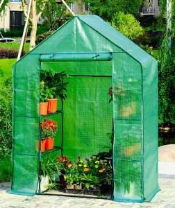 Tomaten-Gewächshaus mit Regalen
